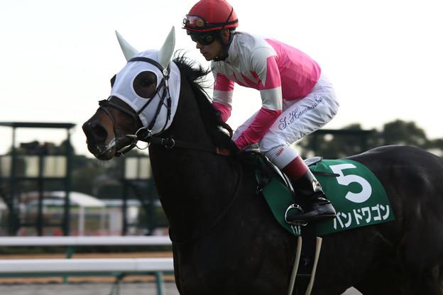 バンドワゴン 返し馬(17/12/09・第53回 中日新聞杯)