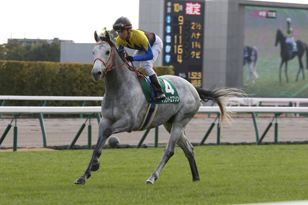 マウントロブソン 返し馬(17/12/09・第53回 中日新聞杯)