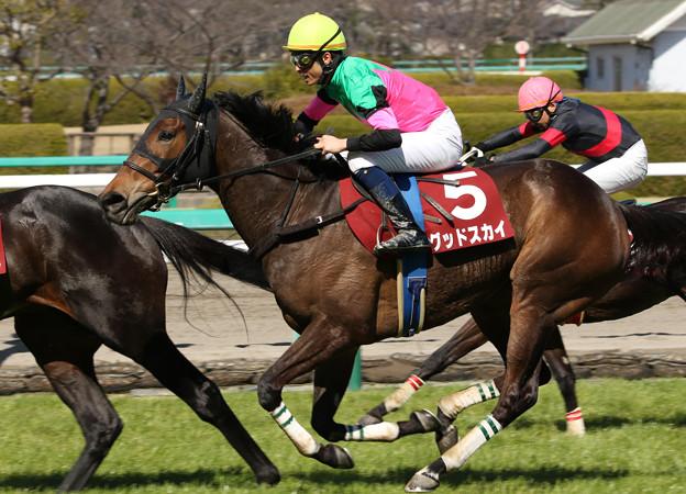 グッドスカイ レース(18/03/10・第20回 阪神スプリングジャンプ)