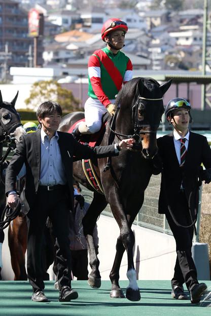ルペールノエル(18/03/10・第20回 阪神スプリングジャンプ)