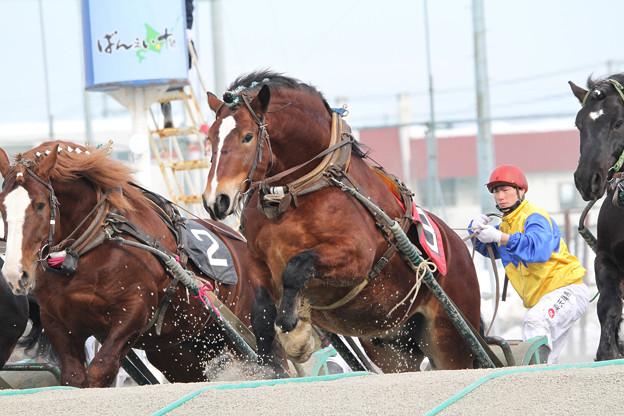 オレワチャンス レース_1(18/03/04・1R)