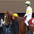 ハッピーグリン レース後(18/03/18・第67回 フジテレビ賞スプリングステークス)