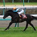 ガンコ レース(18/03/24・第66回 日経賞)