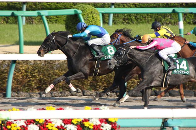 センチュリオン レース(18/03/25・ 第25回 マーチステークス)