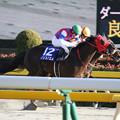 写真: ノンコノユメ レース(18/02/18・第35回 フェブラリーステークス)