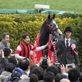 写真: 第92回 中山記念 口取り(18/02/25)