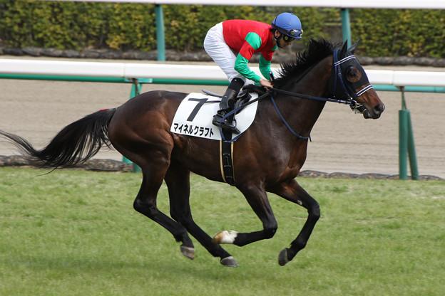 マイネルクラフト 返し馬(17/03/05・8R)