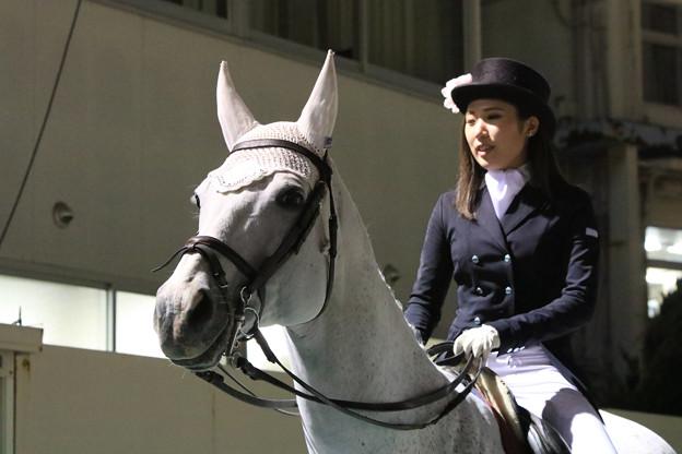 第54回 兵庫大賞典 誘導馬_4(18/05/04・第54回 兵庫大賞典)