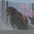 写真: シャイニング レース(18/04/29・7R)