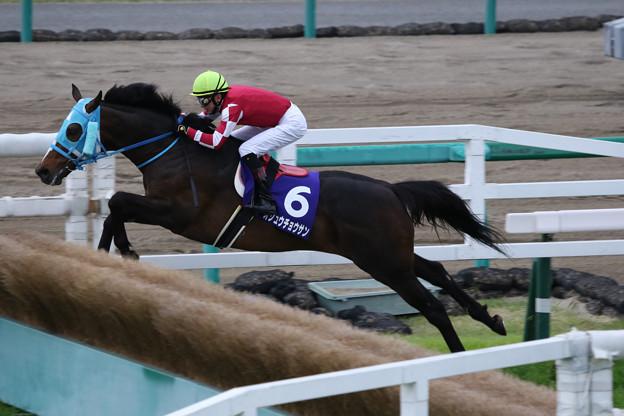オジュウチョウサン レース_3(18/04/14・第20回 中山グランドジャンプ)