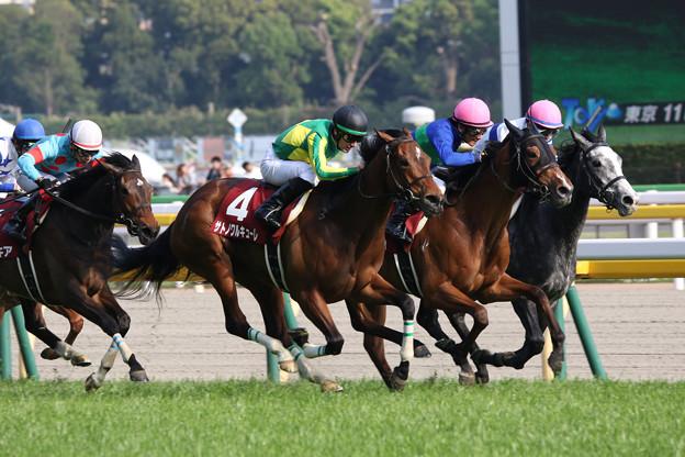 サトノワルキューレ レース_1(18/04/22・第53回 サンケイスポーツ賞フローラステークス)