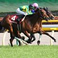 サトノワルキューレ レース_2(18/04/22・第53回 サンケイスポーツ賞フローラステークス)
