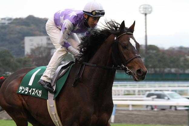 サンライズベガ 返し馬(11/12/10・第47回 中日新聞杯)