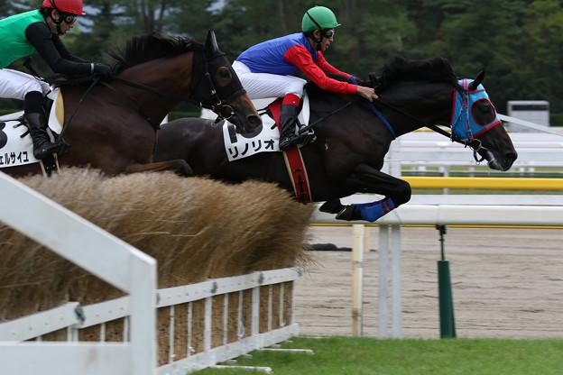 リノリオ レース_2(18/08/25・4R)