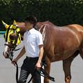 Photos: ヨカグラ レース後(18/07/28・第20回 小倉サマージャンプ)