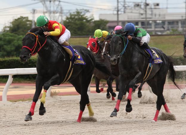 カツゲキキトキト レース_1(18/08/16・中日新聞杯 第47回 くろゆり賞)