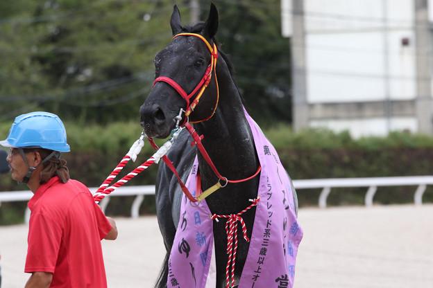 カツゲキキトキト_1(18/08/16・中日新聞杯 第47回 くろゆり賞)
