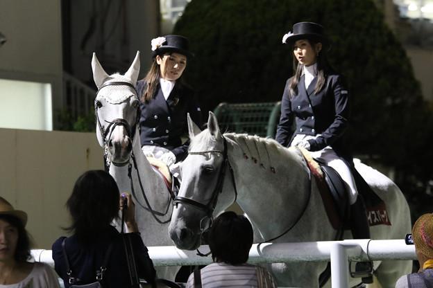 第11回 兵庫サマークイン賞 誘導馬_3(18/07/27・園田競馬場)