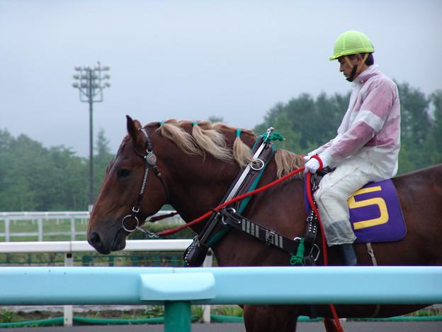 スーパーペガサス_1(05/06/12・第36回 旭王冠賞)