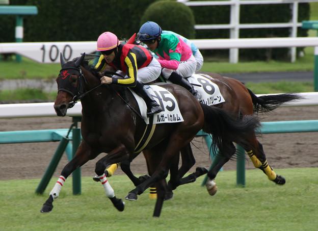 ルガールカルム レース(18/09/22・新馬戦)