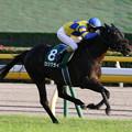 ロジクライ レース(18/10/20・第21回 富士ステークス)