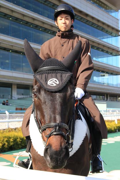 阪神競馬場 誘導馬_1(18/03/10)