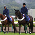 福島競馬場 誘導馬_4(18/07/07)
