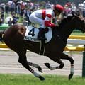 ダノンファンタジー レース(18/06/03・新馬戦)