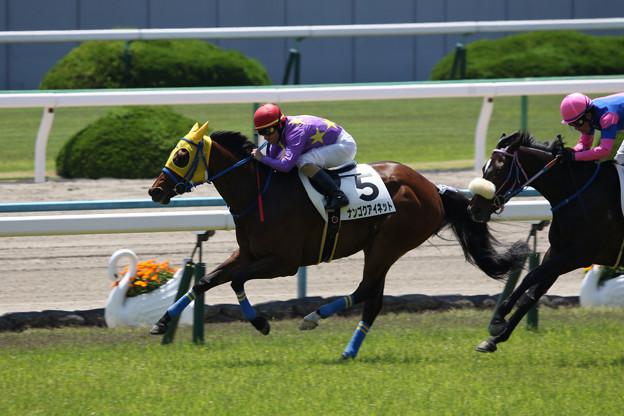 ナンゴクアイネット レース(18/05/05・4R)