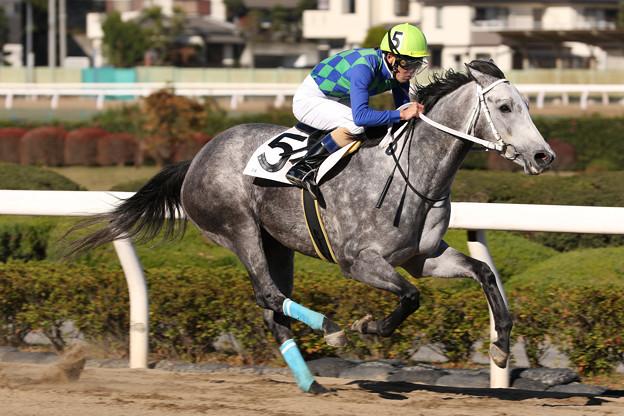 ジョーマキアート レース(18/11/23・6R)