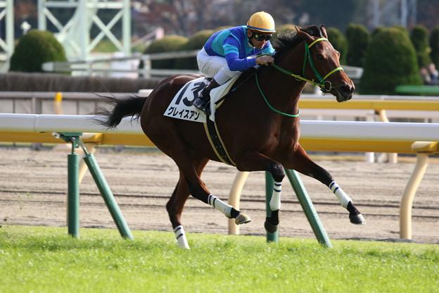 グレイスアン レース(18/11/24・新馬戦)