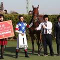 テンブン 口取り(18/12/01・新馬戦)