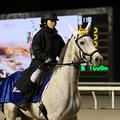 Photos: 船橋競馬場 誘導馬(19/01/16・サンケイスポーツ盃 第63回 船橋記念)