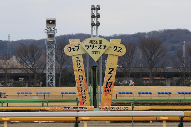 東京競馬場 ゴール板(19/02/17)