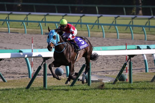 オジュウチョウサン レース_1(19/04/13・第21回 中山グランドジャンプ)