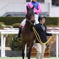 Photos: メイショウハナグシ(19/02/10・新馬戦)