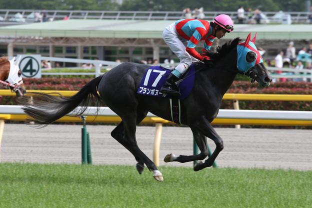 ブランボヌール 返し馬(16/05/08・第21回 NHKマイルカップ)