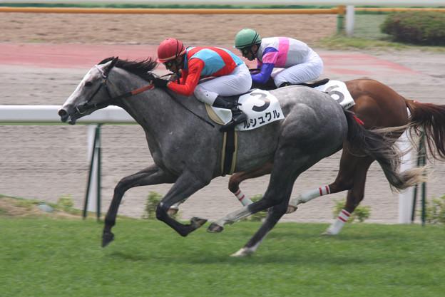 ルシュクル レース(08/07/05・新馬戦)