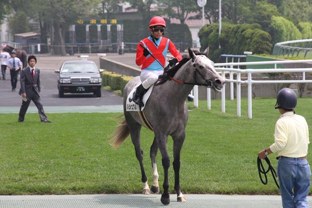 ルシュクル レース後_1(08/07/05・新馬戦)