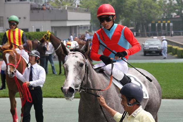 ルシュクル レース後_2(08/07/05・新馬戦)