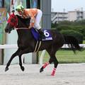Photos: エムエスクイーン 返し馬(19/07/15・スポーツニッポン賞 第23回 名港盃)