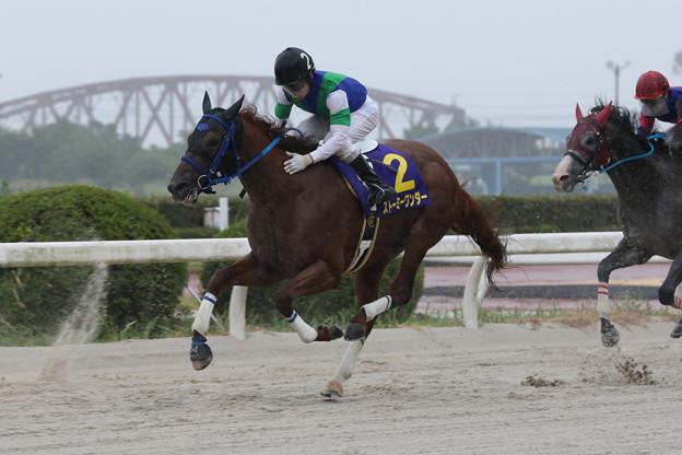 ストーミーワンダー レース_2(19/08/15・中日新聞杯 第48回 くろゆり賞)