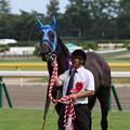Photos: マイブルーヘブン_1(19/08/24・第21回 新潟ジャンプステークス)
