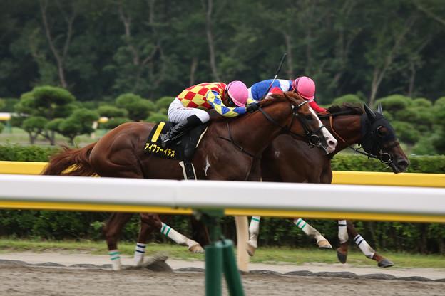 アイファーイチオー レース(19/08/24・BSN賞)