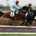 Photos: クリュティエ レース(19/07/13・4R)