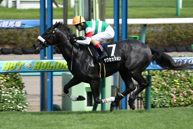 サクセッション レース(19/9/07・アスター賞)