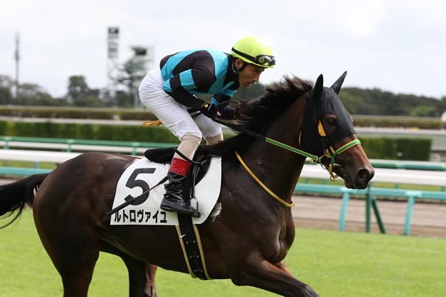 Photos: ルトロヴァイユ 返し馬(19/09/08・2R)