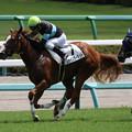 Photos: シャインガーネット レース(19/09/08・新馬戦)