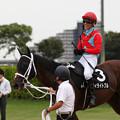 Photos: ディライトフル レース後_2(19/09/21・清秋ジャンプステークス)