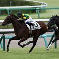 Photos: エバービクトリアス レース(19/09/21・新馬戦)